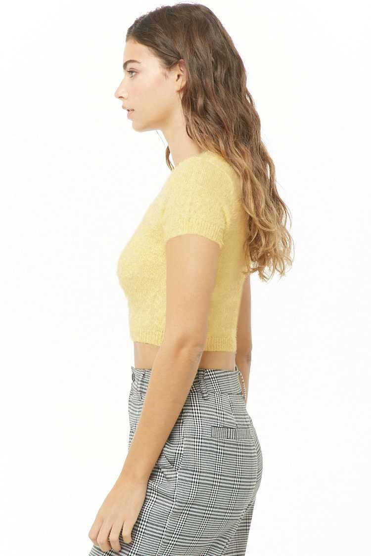 Forever 21 Fuzzy Knit Cropped Top